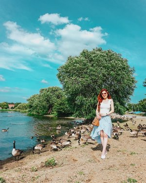 Meet my new peeps!  That's Duckling, Ducklee, Goosey, Goo Goo and so on and so forth. Uh... you get the idea. 💃🦆🦆🦆🦆 Take me back to paradise please!!! Quick question! Are you a country or city kinda person?  #ilbootd #ilbtravels