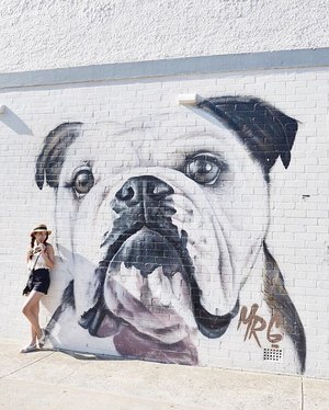 Mr Bulldog & I 🐶👧 💕 bring me back!! Tomorrow's Friday!! 1 more day to the ️Weekends!! I can't wait 😁✌️ • • • • • #chloewlootd #chloewltravels #clozette #livefolk #adventurevisuals #adventures #wanderlust #abcsydneybound #sydney #bondibeach #wallmurals #bulldog #igsg #monochrome #vscodaily #chictopiastyle #ootdcampaign