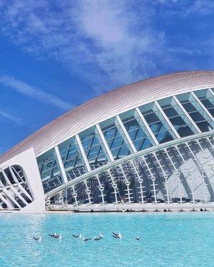 One of Valencia's architectural masterpieces, the futuristic Ciudad de las Artes y las Ciencias 🕊 . #spain #valencia #visitspain #ciudaddelasartesylasciencia #cityofartsandsciences #museumofartsandsciences #beautifuldestinations #wonderfulglobe #ourlonelyplanet #passionpassport #clozette #starclozetter #dametraveler #femmetravel #darlingescapes #thatsdarling