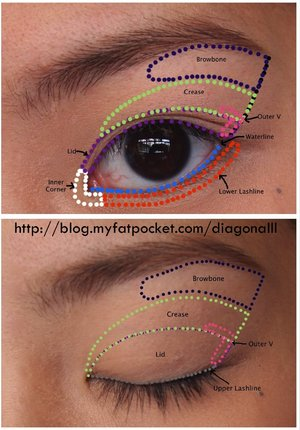 Here's a simple chart summarizing where eyeshadows should be placed on your eyes! Of course there are no hard and fast rules, but hopefully this will prove helpful to beginners! Head over to my blog for a more detailed post and larger pics lovelies!  Search Pictorial for more of my quick eye makeup looks!