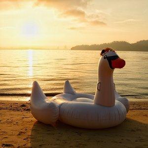 The early bird catches the worm. • #sabah #igmalaysia #malaysia #gayaislandresort #gayaisland #float #swanfloat #qotd #clozette #welovecleo #monday #goodmorning
