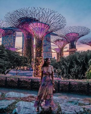 @gardensbythebay during sunset is beautiful ❤️ This is one of my favourite place in #Singapore because so many photo spots ☺️  • • Good thing that the garden is open for public for free! Except the conservatory and skyway. You can enjoy this view of super tree groove and enjoy Garden Rhapsody light and sound show everyday at 7.45pm and 8.45pm. • • #exploreSingapore #VisitSingapore #GardensbyTheBay