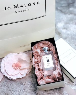 [POPPY & BARLEY] Not a new scent from @jomalonelondon but she is permanent now ❤️ Have u tried it? . This inviting scent was originally from the array of scents from The English Fields collection. Now, Poppy & Barley is a leading lady herself. Even though this scent falls under the floral family but it's topped with blackcurrants. Hence it present a very inviting citrusy scent, which I have major love for. #gifted by #JoMaloneLondonMY . . . #fragrance #fragrancelayering #jomalonelondon #divainmebeauty #beautyblogger #blogger #poppyandbarley #malaysianblogger #kualalumpur #clozette #beautyaddict