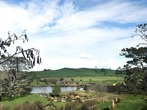 Finally sharing my travel to New Zealand.If you need some zen, New Zealand is the place for you....This is the first part where I described my journey in North Island. South Island coming soon 😉📍Hobbiton, Matamata...More on my blog at www.diva-in-me.com..#hobbiton #hobbitonmovieset #divagoestonewzealand #newzealand #northisland #travelblogger #flashback #travelphotography #wanderlust #clozette #blogger
