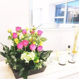 * home garden situation //🌹🍃🌿 #clozette #flowers #themignonnesathome