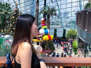 Still can't get enough of the @disneytsum decorations at Flower Dome, @gardensbythebay taken on last weekend. 😍 Here's a photo taken by sister asking me to lick the butt of the baby Donald Duck 😛  #visitsingapore #gardenbythebay #gardenbythebaysingapore #janiceytravels #janiceyinsingapore #poinsettiawishes #flowerdomesingapore #singapore