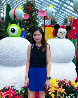 Came down to @visit_singapore just for this. The decorations are so cute but the crowd was massive crazy. 🤦♂️ . The entrance fee for two conservatories (Flower Dome and Cloud Forest) is SGD 23. You can purchase it from @klooktravel. ❤️ . Thank you, next..... #janiceytravels #janiceyinsingapore #disneytsumtsum #poinsettiawishes #flowerdome #gardenbythebay #singapore #visitsingapore