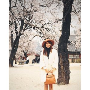 It's coat season, finally! Happy FriYAY everyone! #clozette #cherryblossom #seoul #ootd