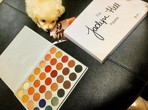Finally got my Morphe by Jaclyn Hill palette. Thank you @cathnieventure. 😍😍 Chub2x is inlove with the colors 🐶🐶🐶 . . . . . . #makeuplover #makeupmafia #makeupjunkie #makeupaddict #morphexjaclynhill #instagood #instagram #instapet #petsofinstagram #puppiesofinstagram #puppyface #puppylove🐶 #chubbypuppy #clozette